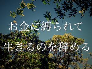 IMGP0319_Fotor.jpg